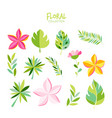 variety tropical leaves set vector image vector image