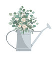 watering can with eucalyptus branches and roses vector image