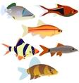 Aquarium fish-2 vector image vector image