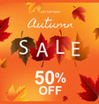autumn poster with leaves and persent vector image vector image