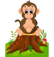 cartoon happy monkey sitting on tree stump vector image vector image