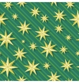 Eight-pointed stars Seamless Pattern vector image vector image