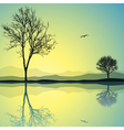 lake landscape vector image