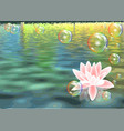 lotus and bubbles vector image vector image