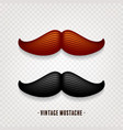 mustache isolated on white black and brown vector image