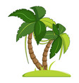 palm tree icon cartoon style vector image vector image