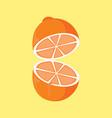 simple flat open orange vector image