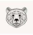 Sketch realistic face Bear Hand drawn in Doodle vector image