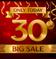 big sale thirty percent for discount vector image vector image