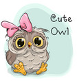 Cute drawing owl vector image