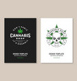 medical cannabis shop poster flyer template vector image