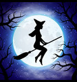 silhouette witch flying on broom in vector image