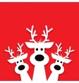 three white reindeer on a red background vector image vector image