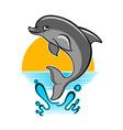 jumping dolphin cartoon vector image