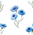 Cornflower watercolor pattern vector image vector image