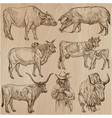 farm animals - an hand drawn pack collection vector image
