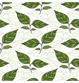 seamless pattern with tea leaves for wrapping vector image vector image