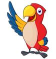 Macaw bid carton waving vector image vector image
