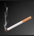 realistic cigarette with smoke isolated vector image vector image