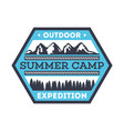 touristic camping vintage isolated badge vector image vector image