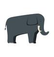 wild elephant isolated icon vector image vector image