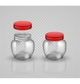 Glass Jars for canning and preserving With cover vector image