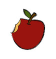 apple fruit isolated vector image vector image