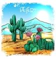 Cactus In Desert Sketch vector image