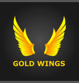 gold wings beautiful design with modern concept vector image