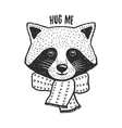 Hand drawn raccoon print Hug me quote vector image