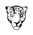 Head of Jaguar vector image vector image