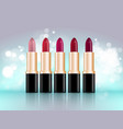 lipstick package design vector image