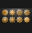 luxury snowflakes set vector image vector image