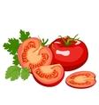 Tomato Healthy lifestile vector image vector image