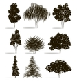 Trees sketch set vector image