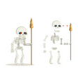 undead skeleton guardian ancient dead resurrected vector image