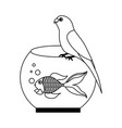 canary and goldfish in bowl vector image