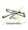 hand drawn sketch style cinnamon stick on vector image vector image