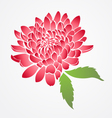 isolated red chinese flower vector image vector image