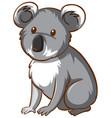 koala bear animal cartoon on white background vector image vector image