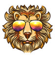 lion in rainbow glasses vector image vector image