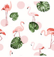 tropical pattern whith flamingo vector image vector image