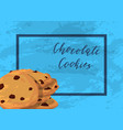 chocolate cookies with grunge texture vector image