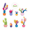colorful potted cacti plants patch sticker set vector image vector image