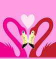 flamingos in love with a heart vector image vector image
