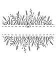 hand drawn background with wild herbs ad flowers vector image vector image