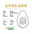 nutrition facts of avocado hand draw sketch vector image