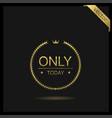 only today laurel wreath icon vector image vector image