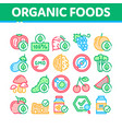 organic eco foods collection icons set vector image vector image