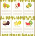 papaya and salak and carambola posters set vector image vector image